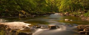 Pure Dartmoor 3